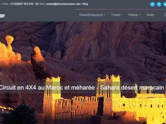 works-desertaraouane.com